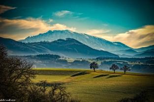"3 Bäume : 3 Hügel : 1 Berg Blick über 3 Hügel vom Melktal zum alles überragenden ""ÖTSCHER"" Foto: dabrandl.com 30. Jänner 2016"