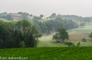 N71_9373.jpg, Nebelschwaden am Hasenberg